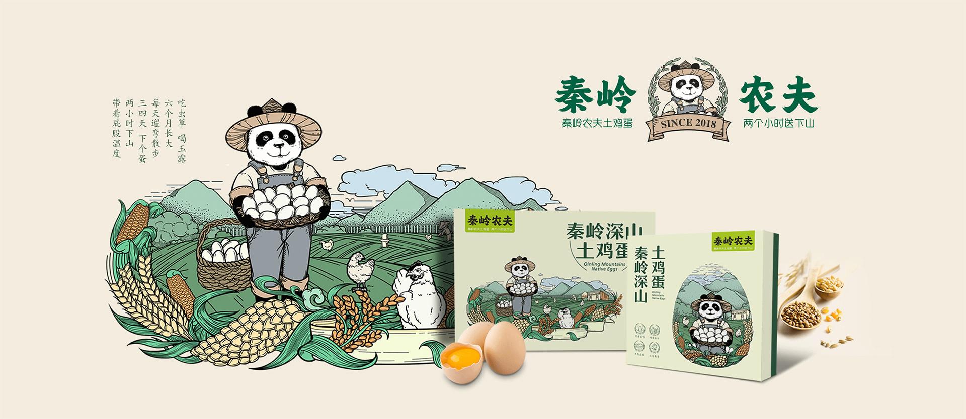 秦岭农夫土鸡蛋包装设计